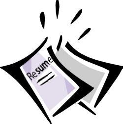 2011 nsf resume format